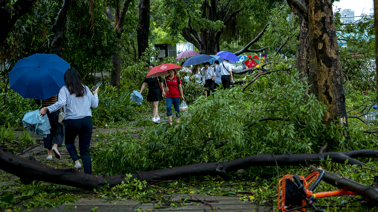 Strongest-in-decades typhoon wreaks havoc in SZ