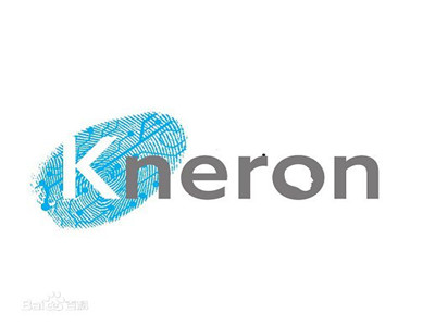 Kneron aims to popularize AI chips